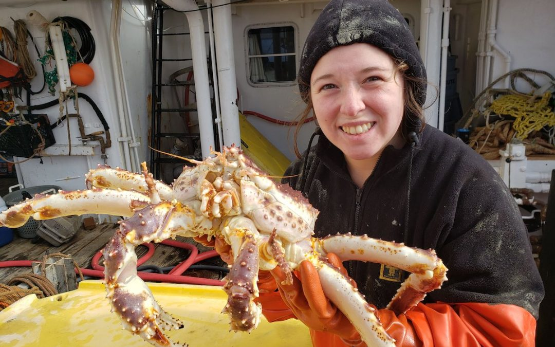 2011 Bristol Bay Red King Crab Inshore Survey
