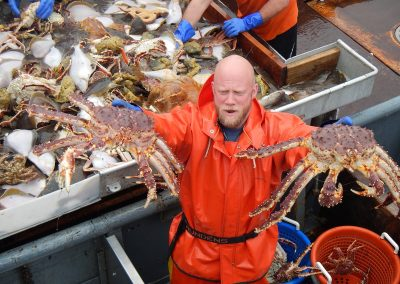 2009 Research/Review of Bristol Bay Red King Crab